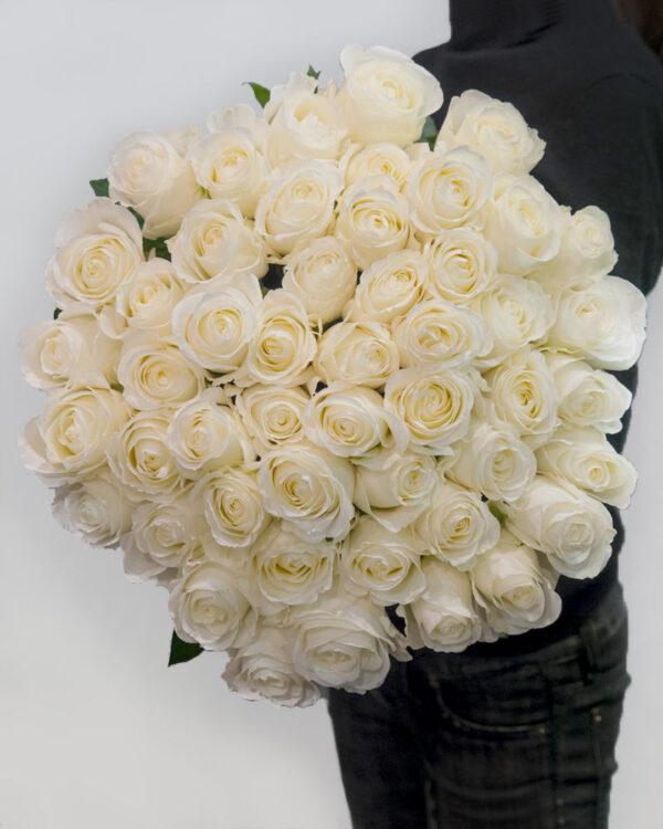 Buket od 51 bele ekvadorske ruže