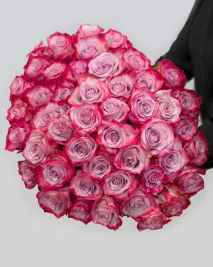 Buket od 51 ljubičaste ekvadorske ruže